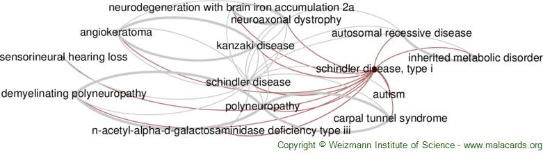 Diseases related to Schindler Disease, Type I