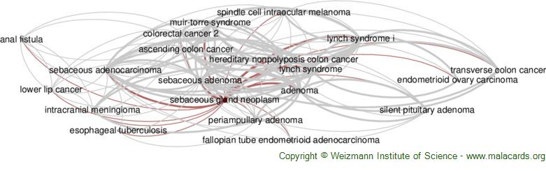 Diseases related to Sebaceous Gland Neoplasm