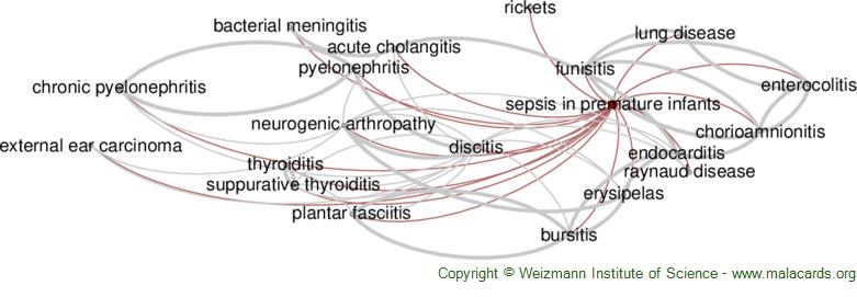 Diseases related to Sepsis in Premature Infants