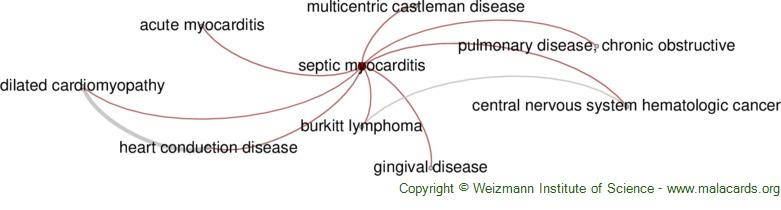 Diseases related to Septic Myocarditis