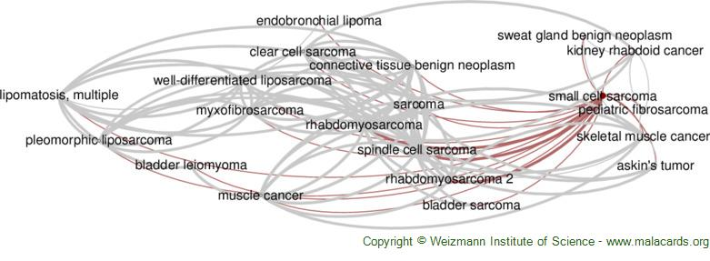 Diseases related to Small Cell Sarcoma