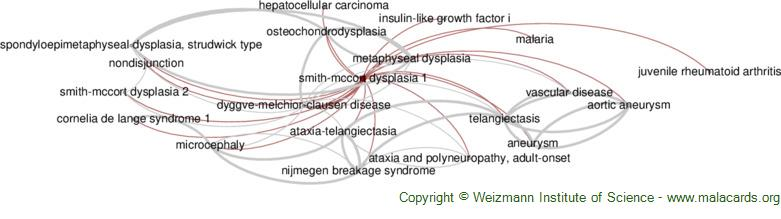 Diseases related to Smith-Mccort Dysplasia 1