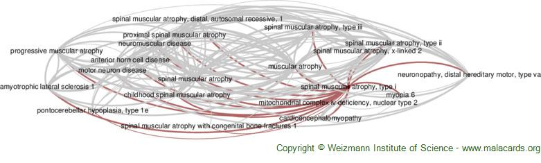 Diseases related to Spinal Muscular Atrophy, Type I