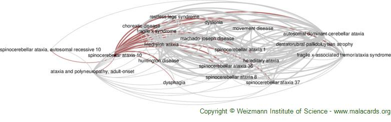 Diseases related to Spinocerebellar Ataxia 10