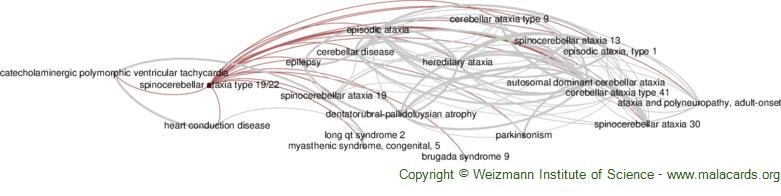Diseases related to Spinocerebellar Ataxia Type 19/22