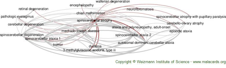 Diseases related to Spinocerebellar Atrophy