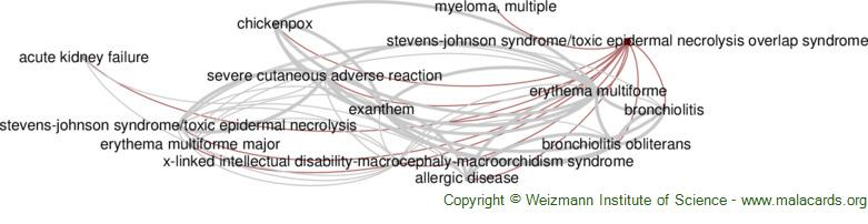 Diseases related to Stevens-Johnson Syndrome/toxic Epidermal Necrolysis Overlap Syndrome