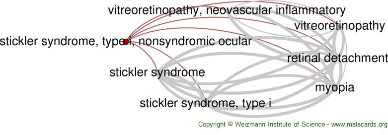 Diseases related to Stickler Syndrome, Type I, Nonsyndromic Ocular