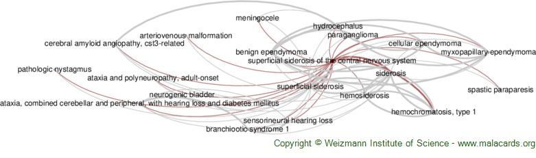 Diseases related to Superficial Siderosis of the Central Nervous System