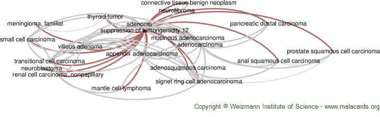 Diseases related to Suppression of Tumorigenicity 12