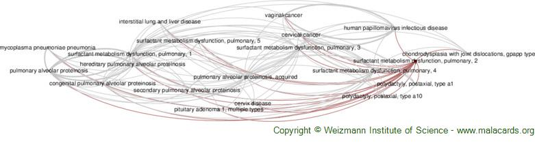 Diseases related to Surfactant Metabolism Dysfunction, Pulmonary, 2