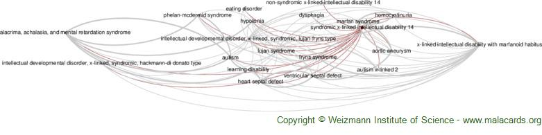Diseases related to Syndromic X-Linked Intellectual Disability 14