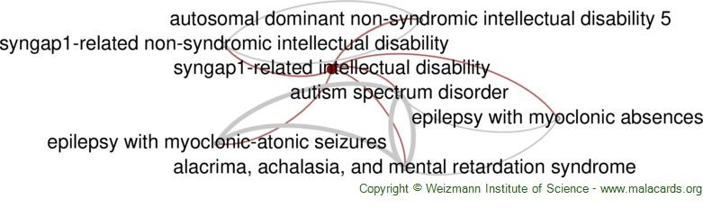 Diseases related to Syngap1-Related Intellectual Disability