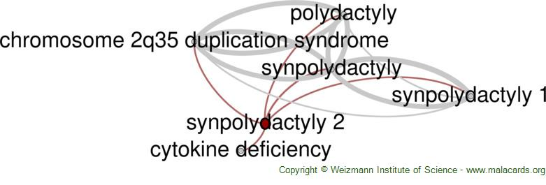 Diseases related to Synpolydactyly 2