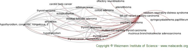Diseases related to Tall Cell Variant Papillary Carcinoma