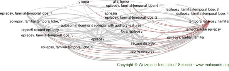 Diseases related to Temporal Epilepsy, Familial