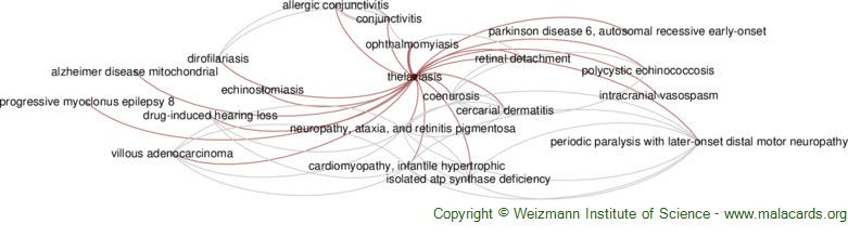 Diseases related to Thelaziasis