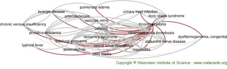 Diseases related to Thrombophlebitis
