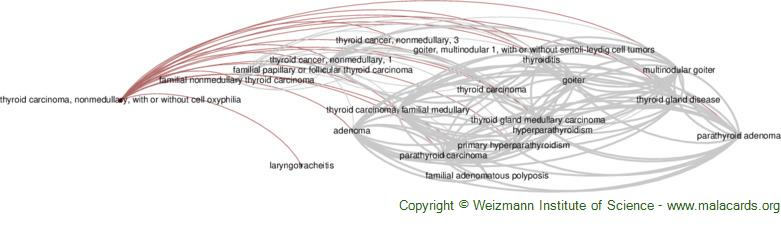 Diseases related to Thyroid Carcinoma, Nonmedullary, with or Without Cell Oxyphilia