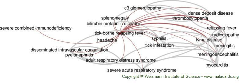 Diseases related to Tick-Borne Relapsing Fever