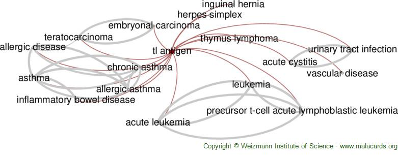Diseases related to Tl Antigen