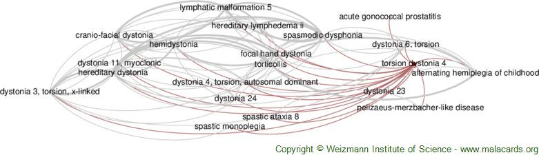 Diseases related to Torsion Dystonia 4