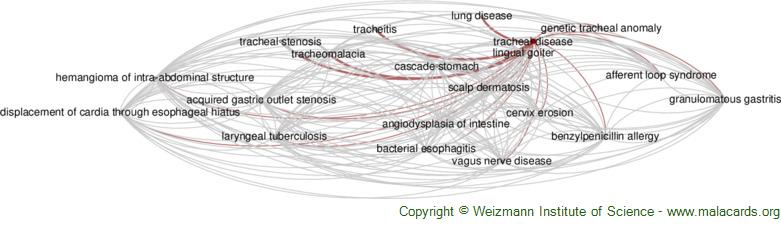 Diseases related to Tracheal Disease