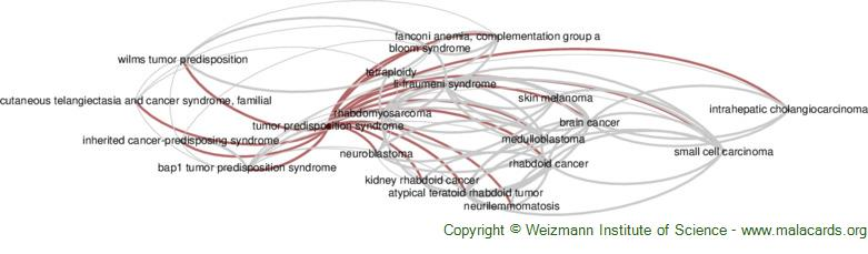 Diseases related to Tumor Predisposition Syndrome