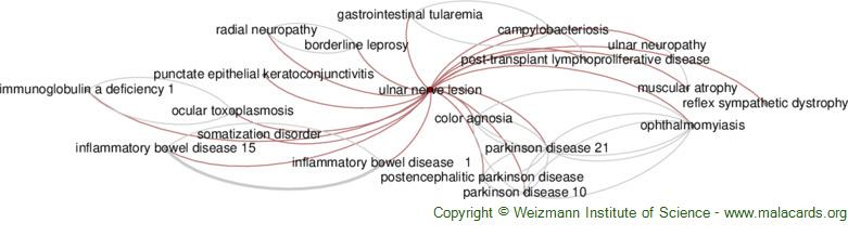 Diseases related to Ulnar Nerve Lesion