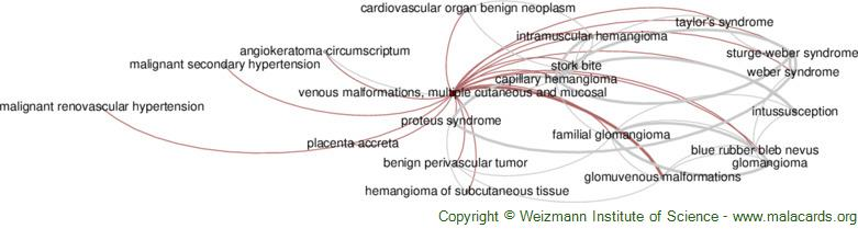 Diseases related to Venous Malformations, Multiple Cutaneous and Mucosal