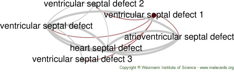 Diseases related to Ventricular Septal Defect 1