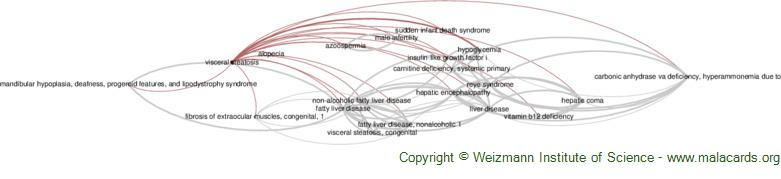Diseases related to Visceral Steatosis