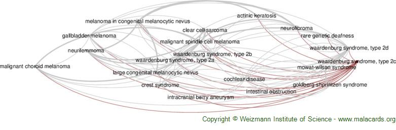 Diseases related to Waardenburg Syndrome, Type 2c