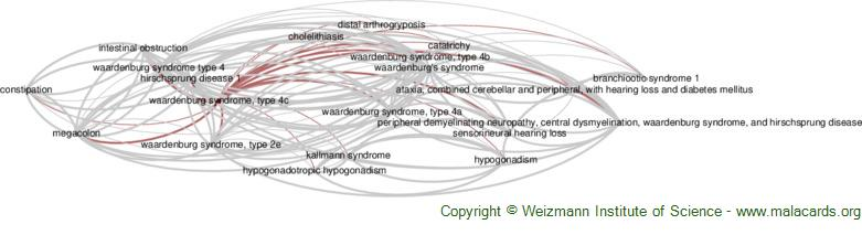 Diseases related to Waardenburg Syndrome, Type 4c
