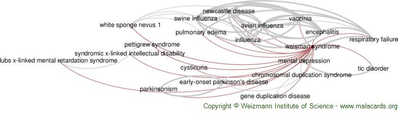Diseases related to Waisman Syndrome