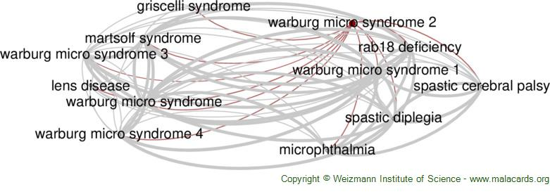 Diseases related to Warburg Micro Syndrome 2