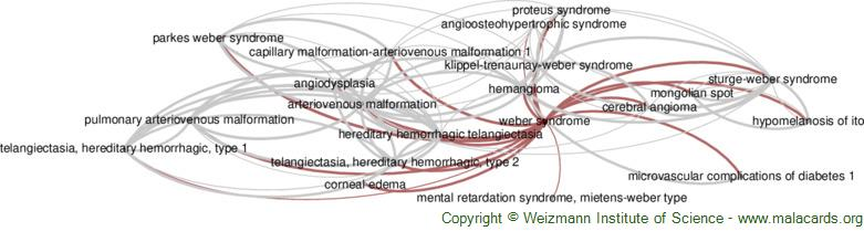 Diseases related to Weber Syndrome