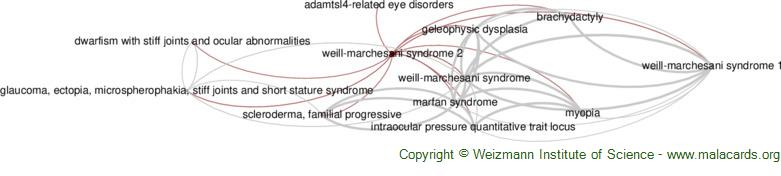 Diseases related to Weill-Marchesani Syndrome 2