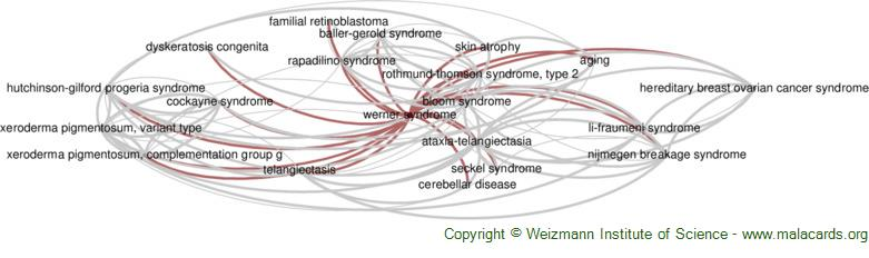 Diseases related to Werner Syndrome