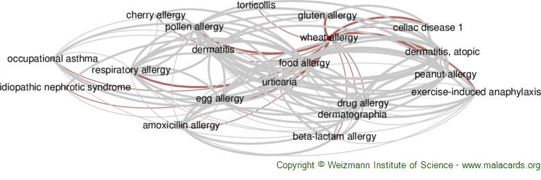Diseases related to Wheat Allergy