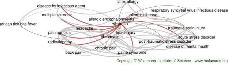 Diseases related to Whiplash