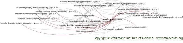 Diseases related to Wieacker-Wolff Syndrome