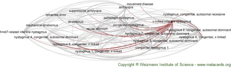 Diseases related to X-Linked Infantile Nystagmus